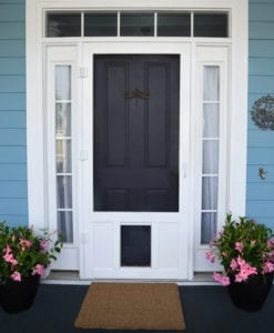 Chesapeake Pet Door